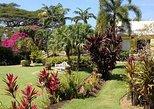 Half-Island Tour of St Kitts