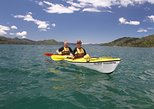Half day Guided Sea Kayak Tour from Picton
