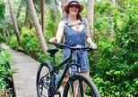Small-Group Green Bike Tour of Bangkok