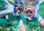 Private Rincon Snorkeling Adventure