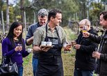 Chef-Led Hunter Valley Gourmet Food and Wine Day Trip from Sydney
