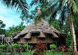 Sarawak Cultural Village from Kuching City