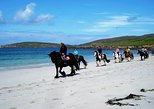 Half-Day Tour: Connemara Wild Atlantic Way Guided Beach Horseback Ride.