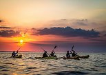 Shore Excursion: Guided half-day sunset kayaking in Connemara Wild Atlantic Way Galway coastline