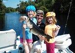 All Day St Johns River Fishing Trip near Daytona
