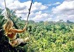 Ubud White Water Rafting, Rice Terrace and Jungle Swing