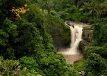 Bali Tegenungan Waterfall, Temple, and Monkey Forest Private Tour