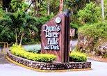 Dunn's River Falls and Ocho Rios Shopping Tour from Falmouth