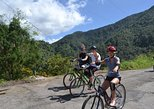 Private Bicycle Tour of Jamaica's Blue Mountains from Falmouth