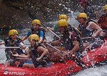 Rafting in The Sarapiqui River Class II - III