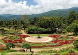 1 Day Car Tour 4: Visit Doi Tung botanical gardens plus the Golden Triangle and Chiang Saen