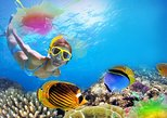 1-Hour Snorkeling Tour and Beach Club Admission with Lunch in Cozumel