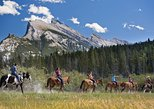 3 Hour Banff Horseback Riding Adventures