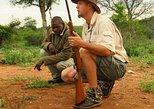 4-Day Or More Private Game Lodge Safari