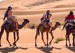 2days from Marrakech to Fez via Merzouga desert (camel trek)