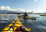 Sunset Nature Kayak Tour in Vancouver