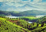 5 Days Kerala Private Tour with Munnar, Thekkady & Alleppey