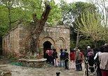 Regular Full-Day Tour Ephesus From Izmir