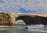 Ballestas Islands Group Tour from San Martin Port