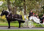 45-Minute Beacon Hill Park Horse-Drawn Carriage Tour
