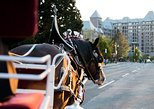 60-Minute Deluxe Horse-Drawn Carriage Tour