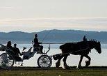 75-Minute Grand Horse-Drawn Carriage Tour