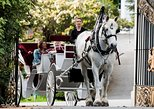 90-Minute Premier Horse-Drawn Carriage Tour