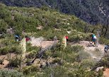 Mt Wilson Mountain Bike Enduro Day
