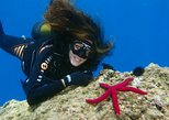 Scuba Diving Beginners 1 dive
