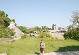 Full Day Tour: Wonders of Agua Azul Cascades and Palenque Ruins