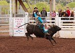 Colorado Springs Western Wednesday Rodeo