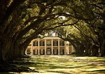 Oak Alley Plantation and Large Airboat Swamp Tour from New Orleans