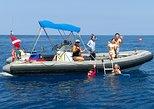 Private Charter: Wild Dolphin Swim, Whale watch, Kealakekua Bay & Snorkeling