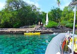 Afternoon Dolphin Watch, Kealakekua Bay Snorkel & Coastal Adventure