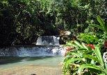 Adventure -> Waterfalls, Crocodiles, Appleton Rum Tasting, Bar in the Ocean