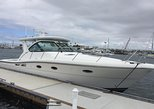 36' Tiara Luxury Fishing Charter in Dana Point