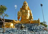 Private Day Tour: Trincomalee from Dambulla