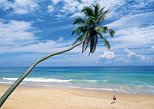 Private Day Tour: Coastal Ride to Galle from Colombo