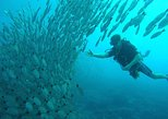 Scuba Diving at Playa Hermosa, Coco and Ocotal Beach