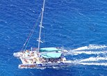 Cabo Girão Skywalk, Wine Tasting, Open Roof 4WD with Dolphin Watching Tour
