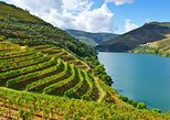 Douro Valley full-day private tour from Porto