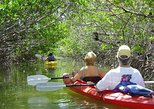 Key West Mangrove Kayak Eco Tour
