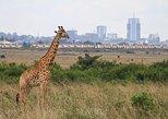 Nairobi National Park, Elephant Orphanage, Giraffe Center and Karen Blixen Museum