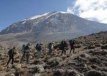 5 days - Mount Kilimanjaro Climbing marangu route