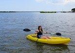 Single Kayak Rental in Daytona Beach