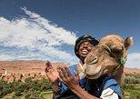2 days one night desert trip Marrakech to Merzouga Erg chebbi including camel