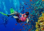 Half Day Zanzibar Mnemba Atoll Marine Reserve Snorkeling Tour