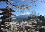 Private Tour: Chartered Car to Mt. Fuji Lake Kawaguchiko or Hakone and Lake Ashi