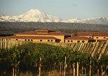 Excursão de degustação de 3 vinícolas em Mendoza com almoço argentino. Mendoza, ARGENTINA