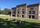 Tour de Degustação de Vinhos de Mendoza, Almoço ou Jantar com Pequeno Grupo. Mendoza, ARGENTINA